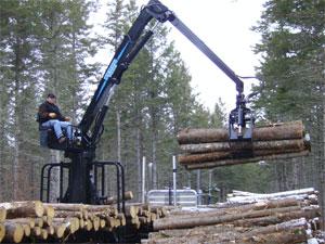 West Mount Inc Forestry Waste Handling Railroad